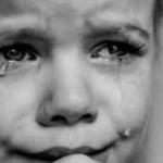 """Представљање књиге др Миле Алечковић """"Освета отете деце"""""""